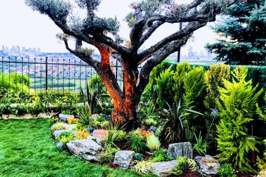 Bahçe ve Ziraat Ürünleri